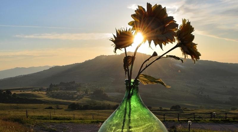 5 atrações imperdíveis na Toscana