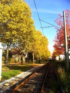 Outono Ettlingen Alemanha