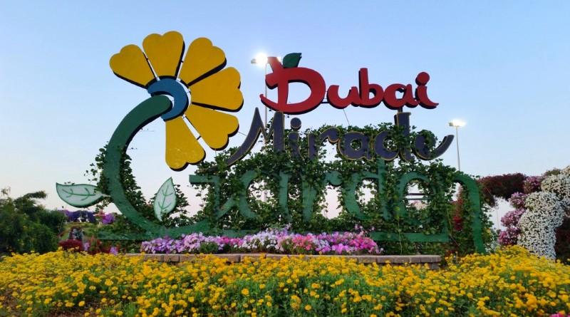 Dubai Miracle Garden, o jardim dos milagres do Oriente Médio