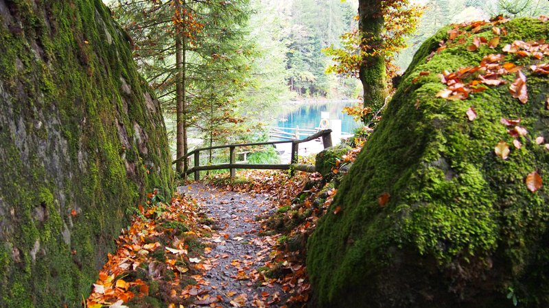 Lago Blausee Suíça - Passeio no parque