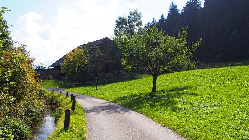 Signau região do Emmental Suíça - Trilhas