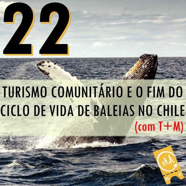 Podcast Ligado em Viagem #20 - [História de Viagem] Turismo comunitário e o fim do ciclo de vida das baleias no Chile (com T+M)